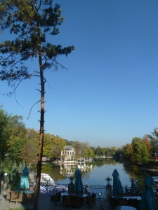 Gogol Park Lake Almaty with Scots Pine